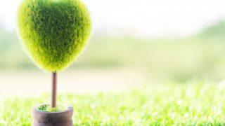 注文住宅で壁面緑化